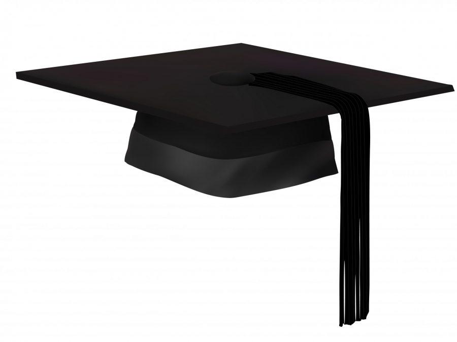 BFA alumni return
