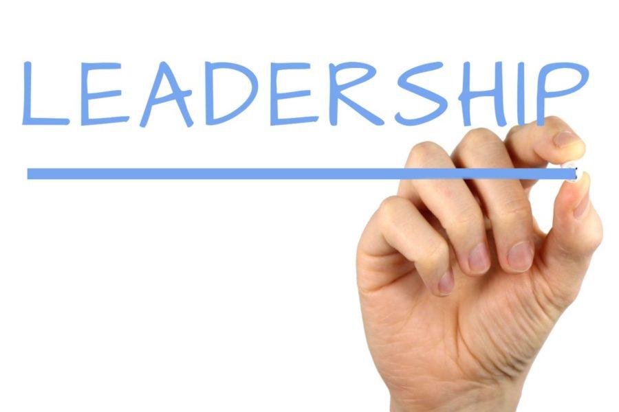 The+growing+leadership+of+BFA