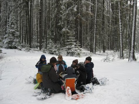 Photo Credit: https://commons.wikimedia.org/wiki/File:Winter_Ecology_Education_(4476908390).jpg