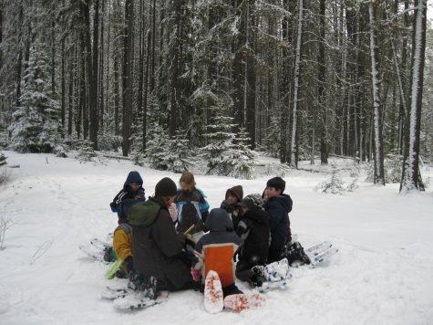 Photo Credit: https://commons.wikimedia.org/wiki/File:Winter_Ecology_Education_(4476908390).jpg
