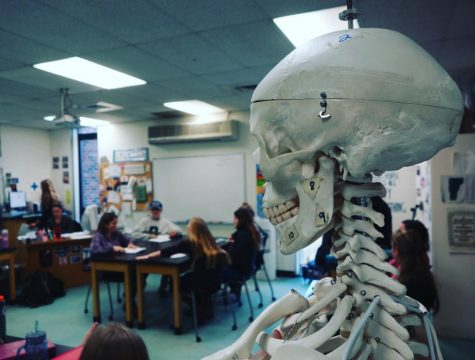 An NCTC Medical Professions Classroom Photo credit:  Dino Patsouris